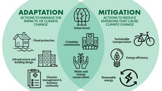 Climate Change Mitigation Action Plan