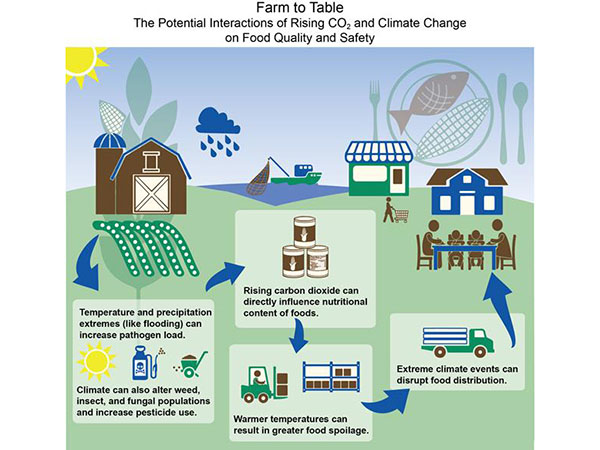 Climate change and urban planning